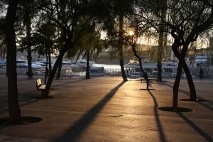 Barcelona Port: Sunny Shadows